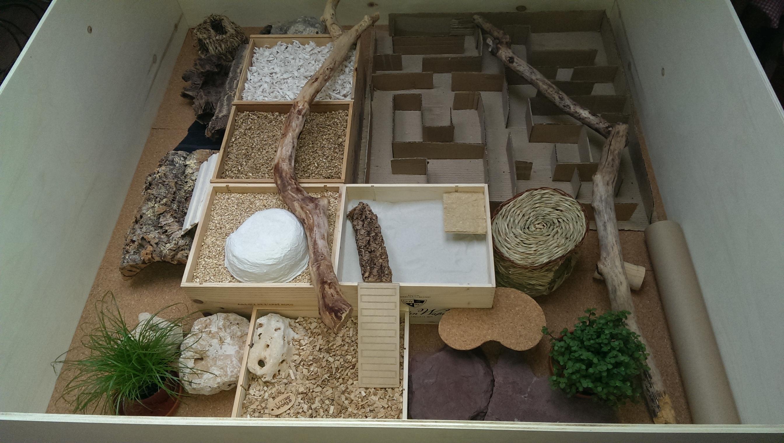 auslauf lady milka 39 s paradies achtung viele bilder. Black Bedroom Furniture Sets. Home Design Ideas