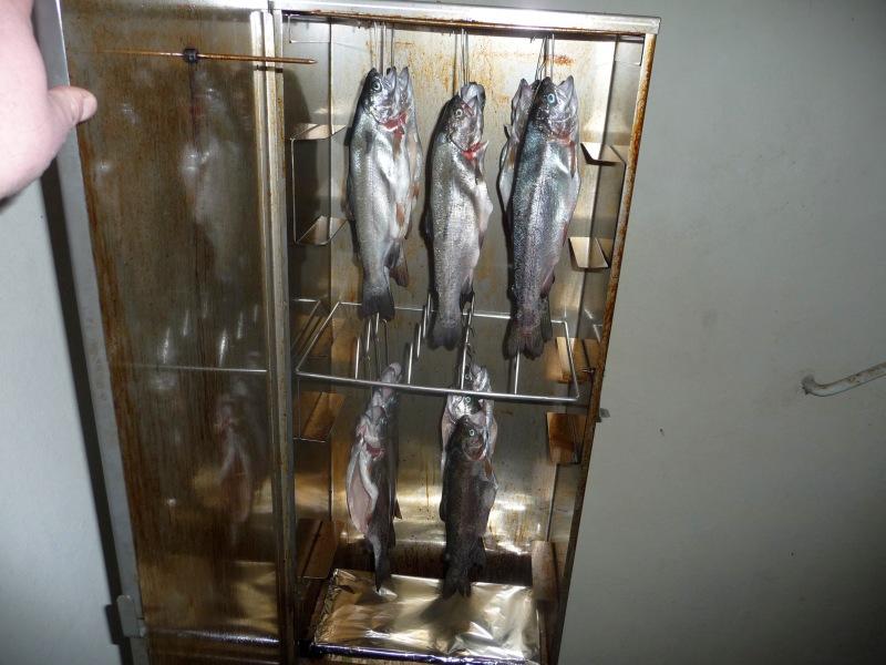 Ger--ucherte-Fische-03.03.12-001.jpg