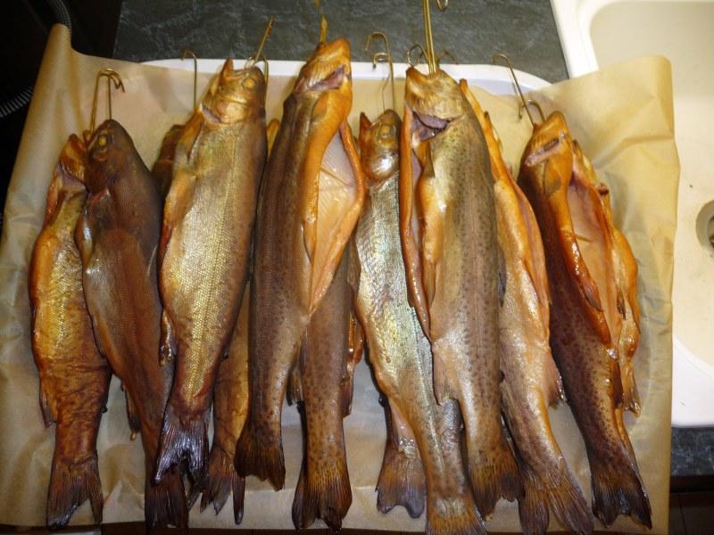 Ger--ucherte-Fische-03.03.12-003.jpg