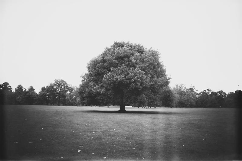 london88kl.jpg