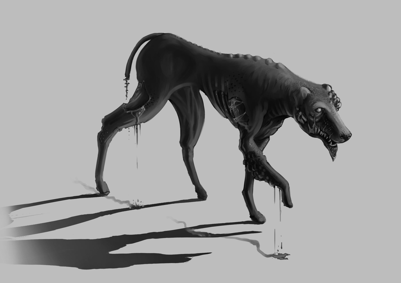 Kranker-Hund.jpg