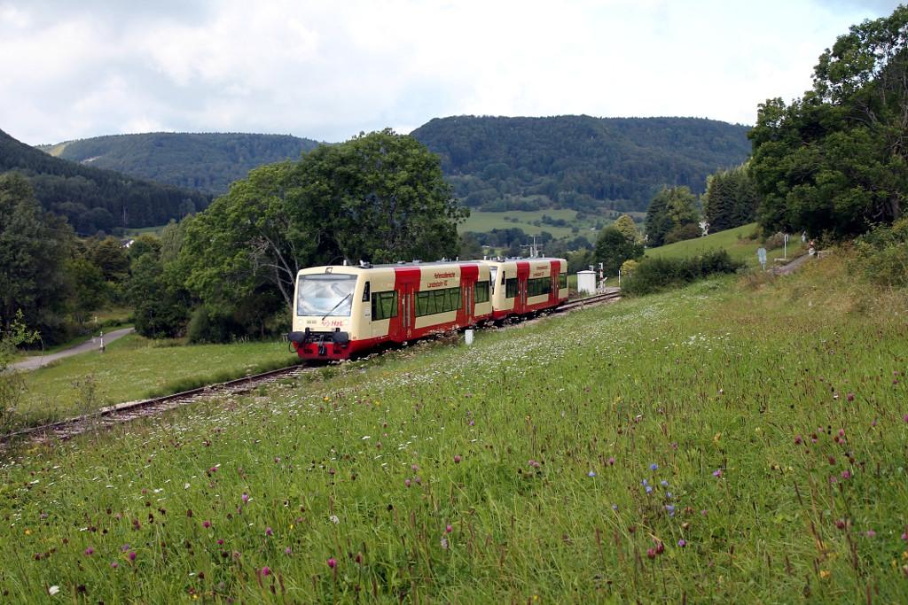 33_August-2014---HzL-88281-mit-VT-45-und-203-bei-Hausen-Starzeln-auf-dem-Weg-nach-Kleinengstingen--24.08.2014-.jpg