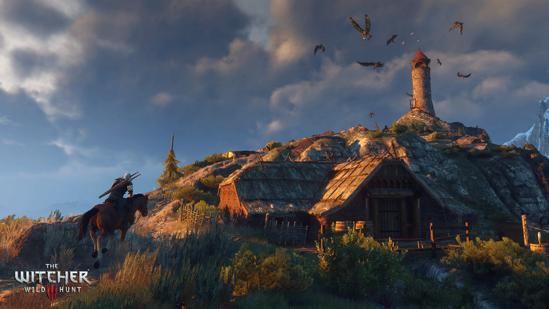 The_Witcher_3_Wild_Hunt_Donat_feed_the_birds-it_only_encourages_them.png