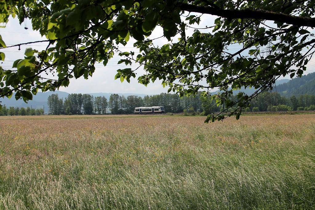 06_SWE-87384-mit-VT-530-kurz-vor-Biberach--21.05.2015-.jpg
