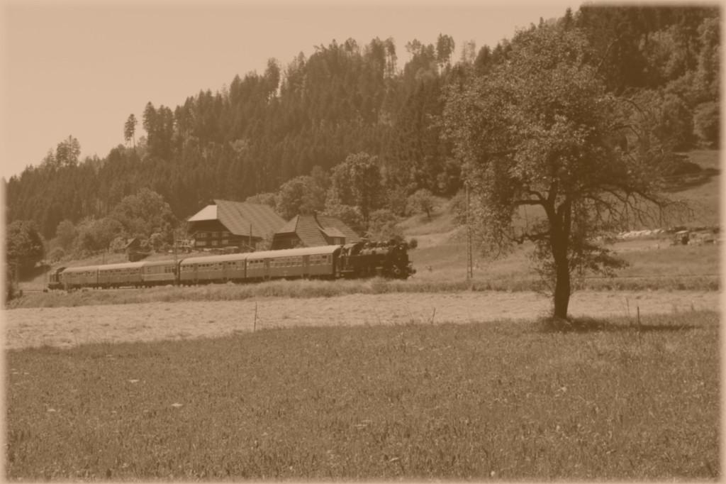 06b_86-333-und-V100-der-NeSa-unterhalb-des-W--ldebauernhofes-auf-dem-Weg-nach-Hausach--04.06.2015-.jpg
